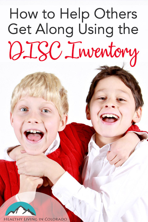 Using the Disc Inventory-pt