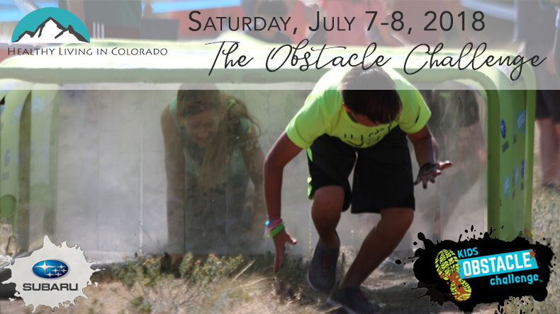 Obstacle Challenge-bg