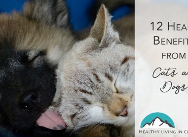 Health Benefits From Cats and Dogs Healthy Living in Colorado