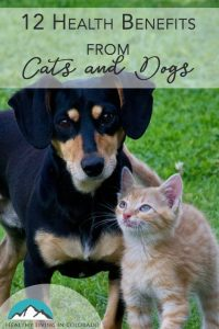 benefits of cats and dogs