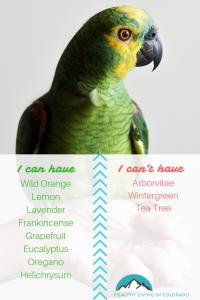 Essential Oils for Birds